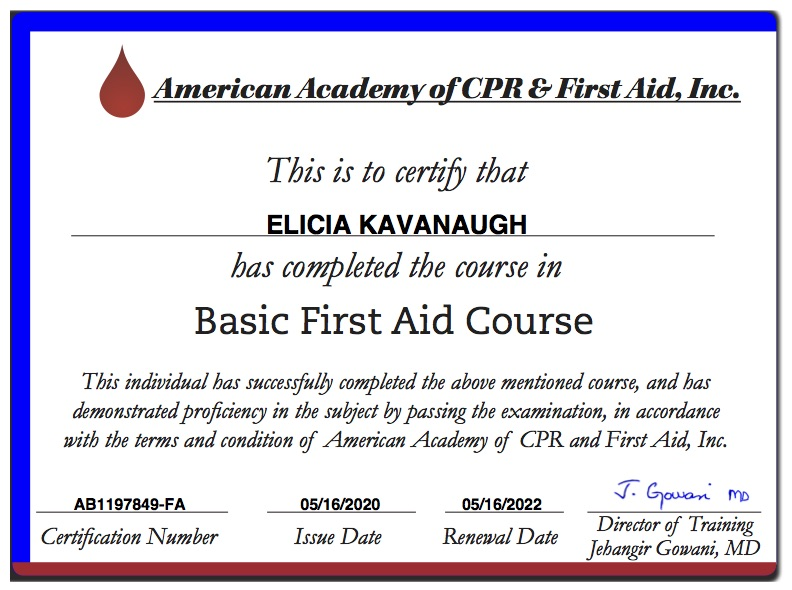 Basic First Aid Certificate